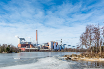 Biomass & Pulp and Paper Industry