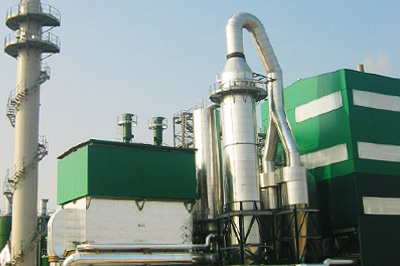 WTE & Biomass Power Industry